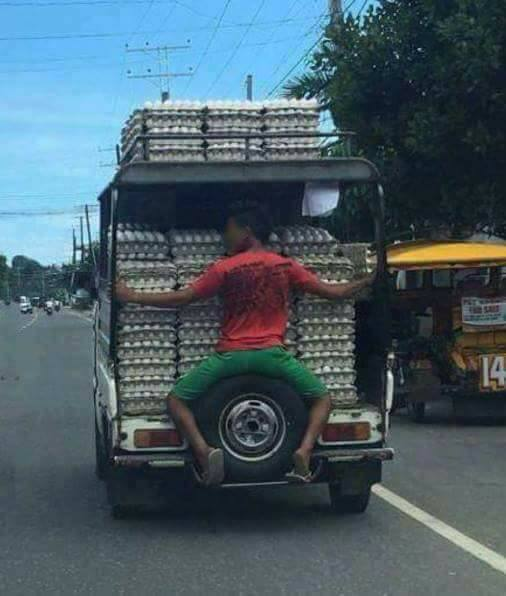 Transporting-Eggs-Thailand