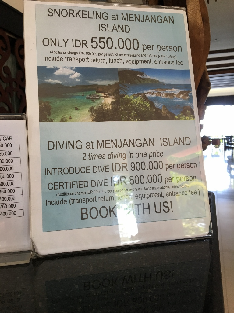 Diving-Tour-Padmasari-Resort-Lovina-Bali--768x1024-