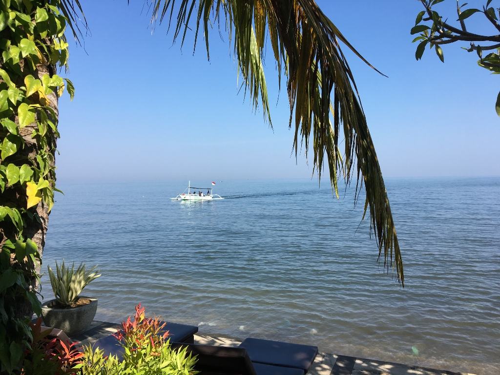 Dolphin-Viewing-Tour-Lovina-Bali--1024x768-