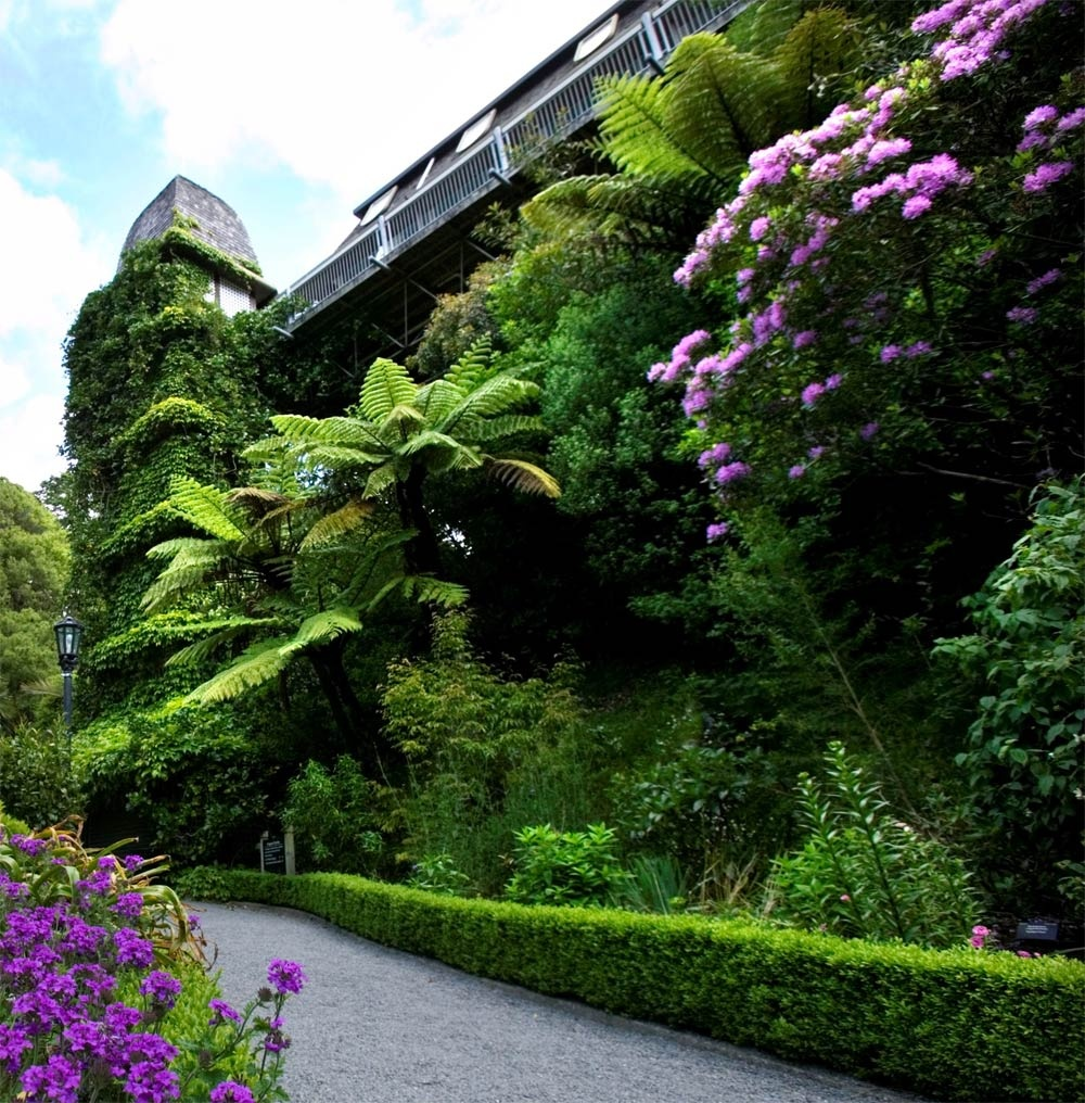 Wellington-Botanical-Gardens